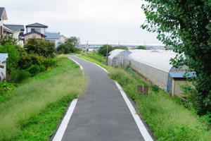 100521_18-01yashio